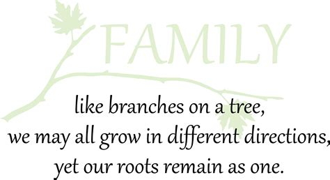 Family Like Branches Of A Tree We May Grow In Different
