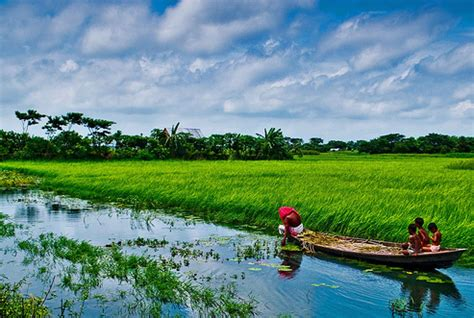 nature of nature bangladesh