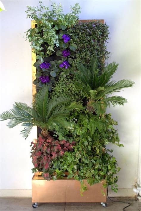 Plants For Vertical Gardens by Best 25 Vertical Planter Ideas On