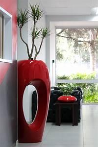 Unique, Indoor, Plants, Simple, Effort, For, Eco