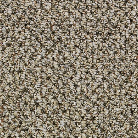 Home Decorators Collection Carpet Home Depot by Home Decorators Collection Color Hatch 12 Ft