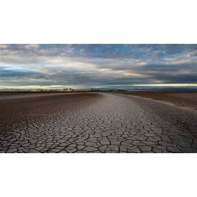 Colorado River Delta: Reconnecting the to Sea
