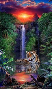 Tiger Falls   Tiger pictures, Tiger art, Animals beautiful