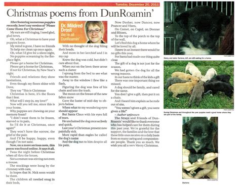 we re all dunroamin article archive