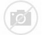 Steve Chen Biography - Childhood, Life Achievements & Timeline