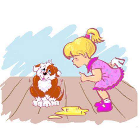 dog urine cleaning