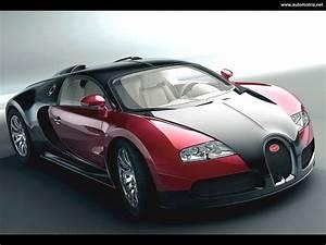 Future Cars Year 2020 - Auto Car Update