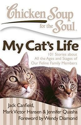 chicken soup   soul  cats life  stories