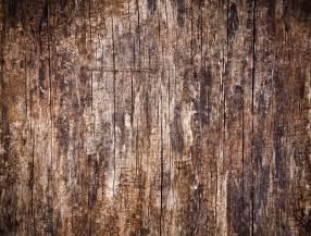 Hardwood Floor Blog