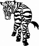 Zebra Coloring Pages Printable Animals Wildlife Animal Getdrawings Drawing sketch template