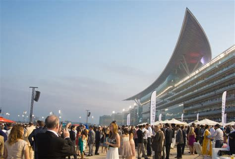 dubai world cup expat sport