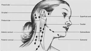 Swollen Posterior Cervical Lymph Nodes Right Side