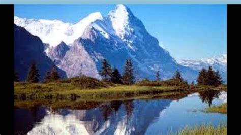 paisajes y animales hermosos