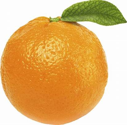 Orange Clipart Leaf Background Transparent Fruits Without
