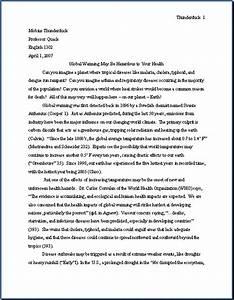 argumentative essay for college students