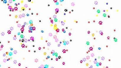 Paw Dog Prints Colorful Clipart Clip Cliparts