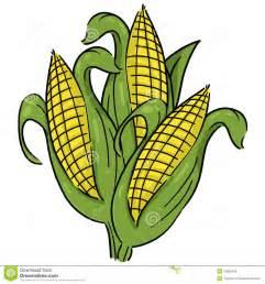 corn stalk clipart many interesting cliparts