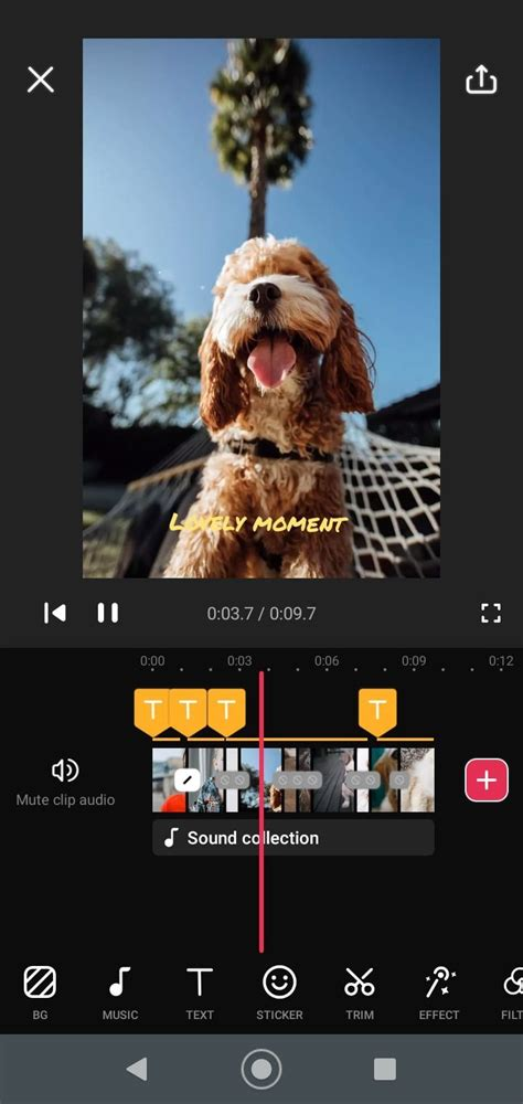 Video Guru 1.294.67 - Download for Android APK Free