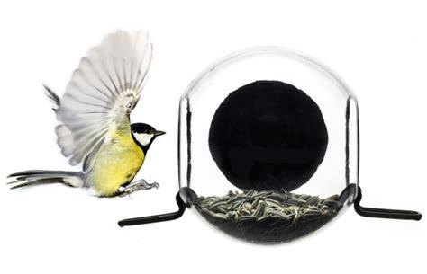 bird feeder ultimate bird feeders