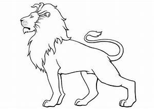 Dessin Jaguar Facile : dibujos de leones dibujos ~ Maxctalentgroup.com Avis de Voitures
