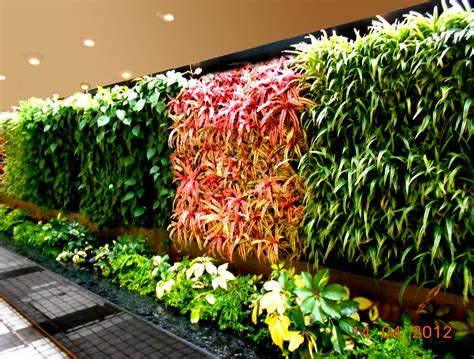 vertical garden concept  buildings greenwall vertical