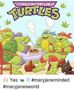 Teenage Mutant Ninja Turtles Meme