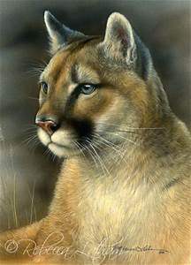 #PowerArtists Interview with Wildlife Painter Rebecca ...