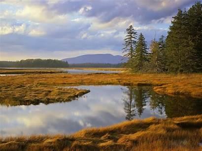 Desktop Maine Marsh Wallpapers9 Acadia Harbor National