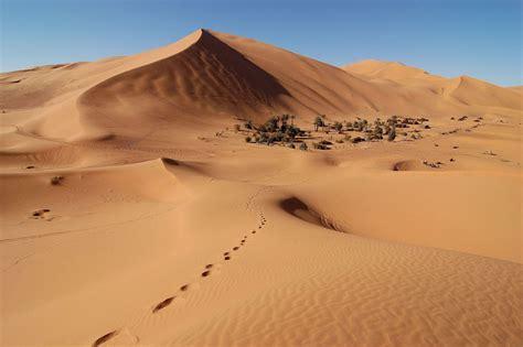 The Sahara Desert Has Grown 10 Percent Since 1920 Yale E360