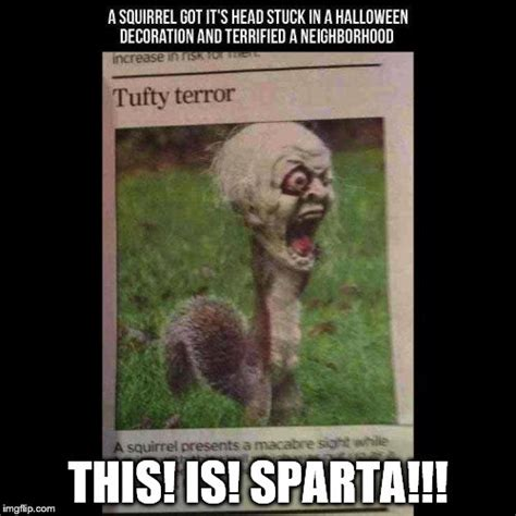 This Is Sparta Meme Generator - holloween squirrel imgflip