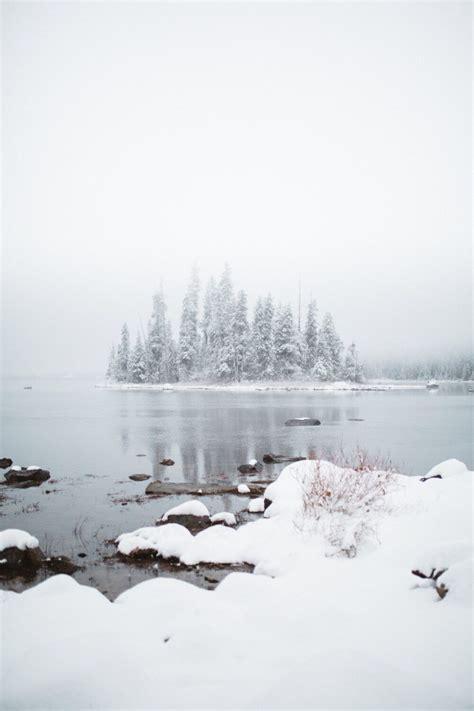 themandagies winter