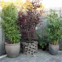 Winterharte Kübelpflanzen Hochstamm : k belpflanzen f r den balkon nxsone45 ~ Michelbontemps.com Haus und Dekorationen