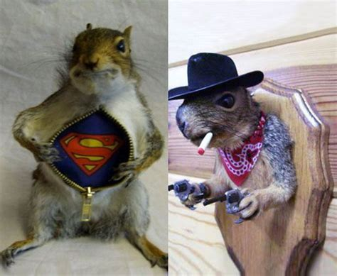 Taxidermy Home Decor: Just . . . Don't