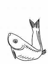 Coloring Pages Eel Herring Electric Printable Getcolorings Colors Recommended sketch template