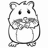 Hamster Coloring Pages Hamsters Cute Printable Sheets Pet Nervous Draw Stake Momjunction Pets Baby Crafts Care Library Animal Easy Stuff sketch template
