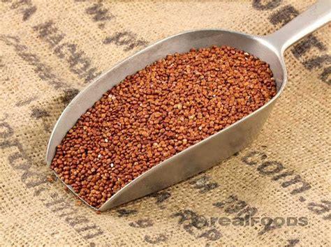 organic red quinoa  real foods buy bulk wholesale