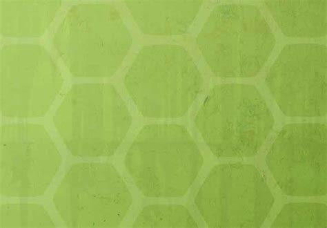 tortoise shell wallpaper wallpapersafari
