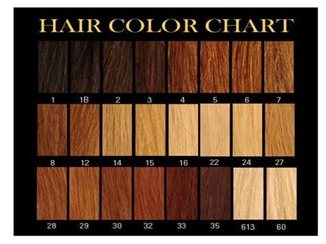 Blonde Hair Color Shades Chart