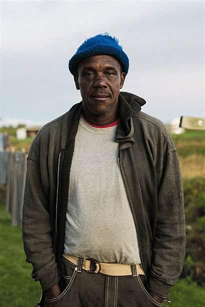 Jamaican Apple York Winston Samuels Pickers Upstate