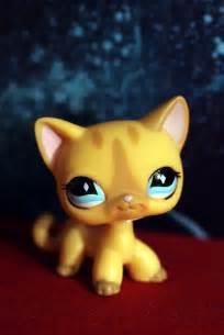 pet shop cats littlest pet shop cat 886 elizabeth flickr