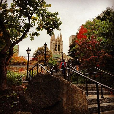 boston college colors fall colors on cus boston college cus