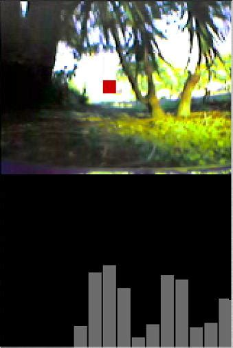 high speed obstacle avoidance  monocular vision