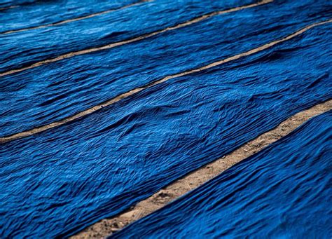 what is the color indigo the journey to understanding indigo a colour that