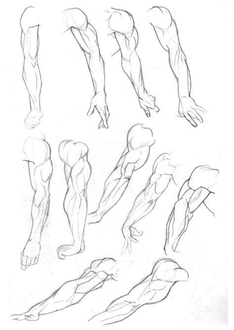 references arms