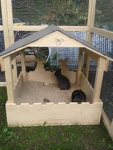 Kaninchenstall Selber Bauen Für Draußen : 1000 ideen zu kaninchenstall auf pinterest indoor ~ Lizthompson.info Haus und Dekorationen