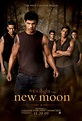 "Three New ""The Twilight Saga: New Moon"" Movie Posters ..."