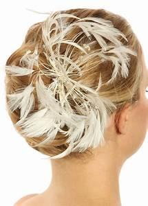 Peigne Cheveux Mariage : bijoux cheveux mari e en plumes mod le volupt princesse d 39 un jour ~ Preciouscoupons.com Idées de Décoration