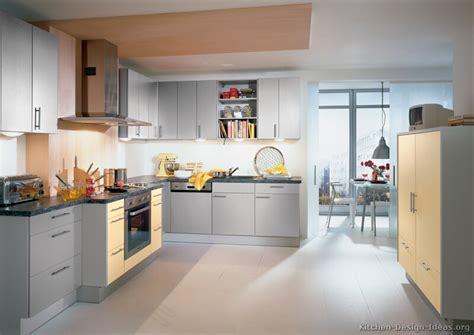 kitchen ideas grey pictures of kitchens modern gray kitchen cabinets