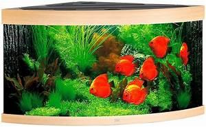 L Form Aquarium : juwel aquarien aquarium trigon 350 bxtxh 123x87x65 cm 350 liter online kaufen otto ~ Sanjose-hotels-ca.com Haus und Dekorationen