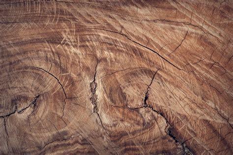 Gambar : pohon, batu, tekstur, lantai, bagasi, pembentukan
